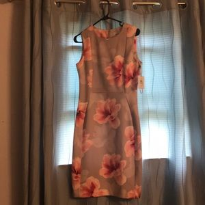 NWT, Great office dress. Taupe with pink flowers.